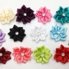 30pc Assorted Satin Rhinestone Flowers Appliques As266 [Office Product]